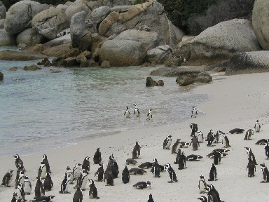 Suedafrika014a