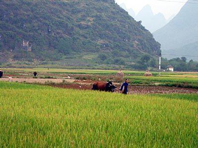 China-2001-028