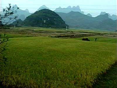 China-2001-068