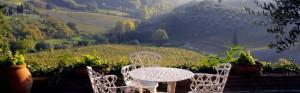Villa_Il_Pozzo-Toskana-Italien-20140912140005